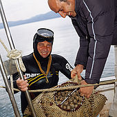 Diver surfaces with a bag od mussels, Lesvos, Greece