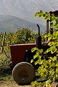 An old chinese tractor takes a rest, Valley of Permet, Albania