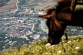 The suburbs of Permet, crossed by River Vjosa, as seen from the trail to Mount Papingut, Albania