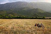 Countryside near Permet, Albania