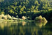 Montenegro, Biogradsko lake