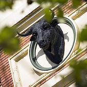 Coso de la Misericordia (Arena of Mercy) Bullring, Bullfighting Arena, Zaragoza, Saragossa, Aragon, Spain