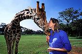 Kenya, region de Nairobi, le Manoir aux Girafes de Bryony Anderson (qui veut sauver les girafes de Rotschild). Bryony avec Uhuru