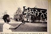 Kenya, region de Nairobi, le Manoir aux Girafes, ou Bryony et Rick Anderson veulent sauver un groupe de girafes de Rotschild. L'acteur américain Richard Chamberlain, de passage au Manoir