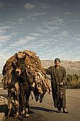 Carrying skins from the skin market to the tannery, Fes, Morocco