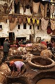 Workers at the tanneries, Fes, Morocco