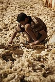 Worker laying out discarded wool to dry in the sun, the tanneries, Fes, Morocco