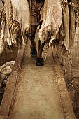 Worker carrying skins across bridge in the tanneries, Fes, Morocco