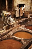 Foremen in discussion at the tanneries, Fes, Morocco