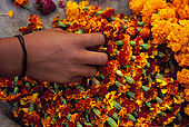 Young girl prepares flower gifts for the evening ceremony 'Offerings to the Ganges'.