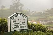 Tea factory signage with tea plantations in background, Nuwara Eliya, Central Province, Sri Lanka, Ceylon.
