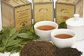Teapot, cups and tea cannisters with tea leaves and processed tea, tea plantation, Nuwara Eliya, Central Province, Sri Lanka, Ceylon.