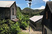La Griveliére (old colonial coffee plantation), Vallée de Grande Rivière, 97119 Vieux Habitants, Guadeloupe (Basse Terre), French West Indies. tel: 0590 98 3414