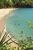 Anse de Baille Argent (tra Pointe Noire a Dehais), Guadeloupe (Basse Terre), French West Indies