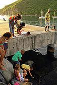 Bambini cercando di prendere un pesce, Deshaies, Guadeloupe (Basse Terre), French West Indies