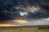 Sunset over the Masai Mara after a rainstorm