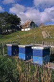 Balkan, Adriatic sea coast    Republic of Montenegro    Mountains of Dormitor    Near Zabljak    Farm Honey