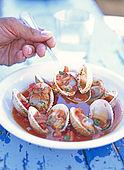 Balkan, Adriatic sea coast    Republic of Montenegro    Village of Perzno nea Budva    Restaurant 'Langusta' (Lobster)    Clams with Bozara sauce