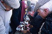 France, Lot, Quercy region village Lalbenque marché du mardi marchandages, on sent et on palpe les truffes pour évaluer leur qualité editorial only