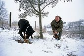 France, Lot, Quercy region vers le village Rocamadour producteur de truffes recherche de truffes en janvier avec un chien Patrick Boris model release OK