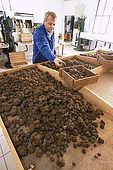 France, Lot, Quercy region ville de Cahors société Pebeyre de produits à base de truffes : Pierre Jean Pebeyre première sélection editorial only