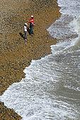 Children on the stone beach at Brighton