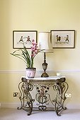 Lamp and orchid plant on metal side table