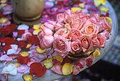 Rose petals, Dades Valley, Morocco