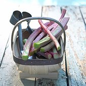 Rhubarb in a wooden basket on a wooden floor