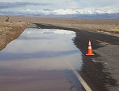 Flooded Road in the Desert (Death Valley National Park, California, USA)