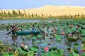 Vietnam, Côte, Mui Ne - Lotus Lake and White Sand Dunes near Mui Ne, Dong Nam Bo, Binh Thuan