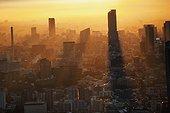 tokyo skyline glowing at dusk; tokyo, japan