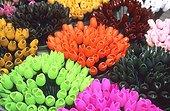 Pays Bas - Amsterdam - Marché aux fleurs