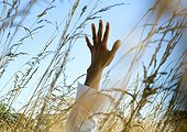 Man's arm reaching up amongst tall weeds