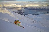 Norway, Lyngen, Skier skiing downhill at polar sea