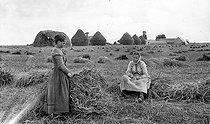 Roger-Viollet | 158204 | Beauce. Scene of harvest, about 1900. | © Neurdein / Roger-Viollet