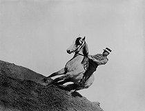 Roger-Viollet   163777   Officer on horseback, 1880-1910.   © Léopold Mercier / Roger-Viollet