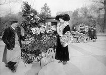 Roger-Viollet | 171366 | Flower seller. Paris, circa 1910. | © Albert Harlingue / Roger-Viollet