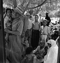 Roger-Viollet | 171432 | Gaston, Paris (1903-1964). Afrique : El Goléa et Colomb-Béchar (Algérie). négatif sur support souple en nitrate de cellulose. [s. d.]. Bibliothèque historique de la Ville de Paris. | © Gaston Paris / BHVP / Roger-Viollet