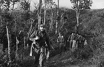 Roger-Viollet | 176033 | Fidel Castro (1926-2016), Cuban revolutionary and statesman, equipped with a bag and rifle in the Sierra Maestra. Cuba, 1963. | © Gilberto Ante / Roger-Viollet