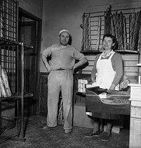 Roger-Viollet | 177488 | Bakers in their shop. Paris, 1955. | © LAPI / Roger-Viollet