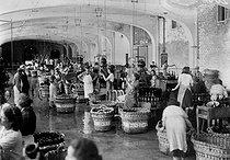 Roger-Viollet | 180787 | Nettoyage des bouteilles de champagne. Epernay (Marne), 1942. | © LAPI / Roger-Viollet