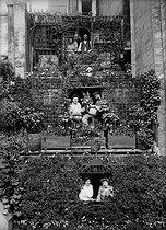Roger-Viollet | 187243 | Concours de balcons fleuris, rue du Temple. Paris, 1906. | © Jacques Boyer / Roger-Viollet