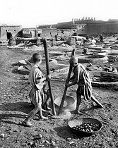 Roger-Viollet | 192190 | MARRAKECH - GRINDING FROM THERE POWDERS TO DYE | © Jacques Boyer / Roger-Viollet