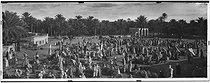 Roger-Viollet | 202864 | Marché arabe dans le sud. Sahara (Algérie), vers 1900. | © Léon & Lévy / Roger-Viollet
