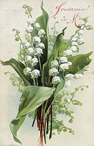 Roger-Viollet | 203205 | Lily of the valley.  May Memory . Postcard of May Ist. | © Roger-Viollet / Roger-Viollet