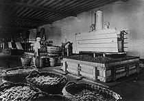 Roger-Viollet | 210753 | Vin de Champagne. Pressurage du raisin. Reims (Marne), 1936. | © Jacques Boyer / Roger-Viollet