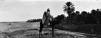 Roger-Viollet | 220786 | Sahara. Around 1900. | © Léon & Lévy / Roger-Viollet