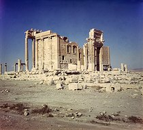 Roger-Viollet | 225660 | Sanctuary of Bel. Palmyra (Syria), November 1953. | © Collection Roger-Viollet / Roger-Viollet
