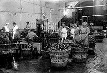 Roger-Viollet | 237988 | Cleaning of Moët et Chandon champagne bottles. Epernay (France), 1942. | © LAPI / Roger-Viollet